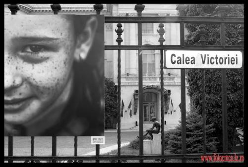 Mediafax Foto - Best of 2006