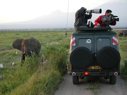 look-behind-photographers-safari