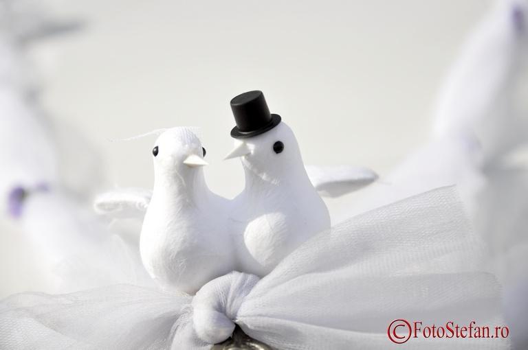 porumbrei de nunta