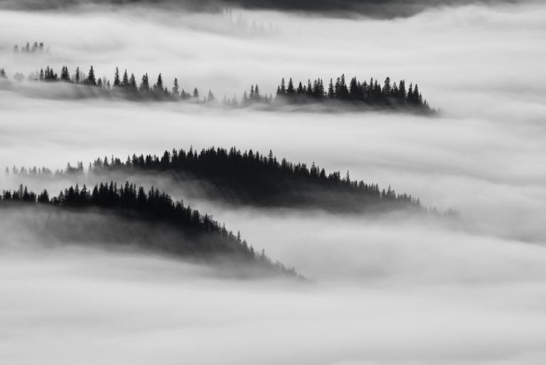 fotografie montana