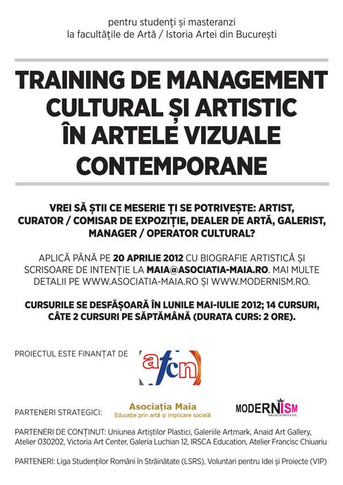 Management cultural în artele vizuale