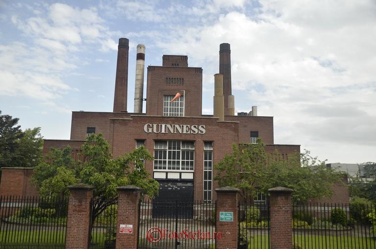 guinness fabrica bere