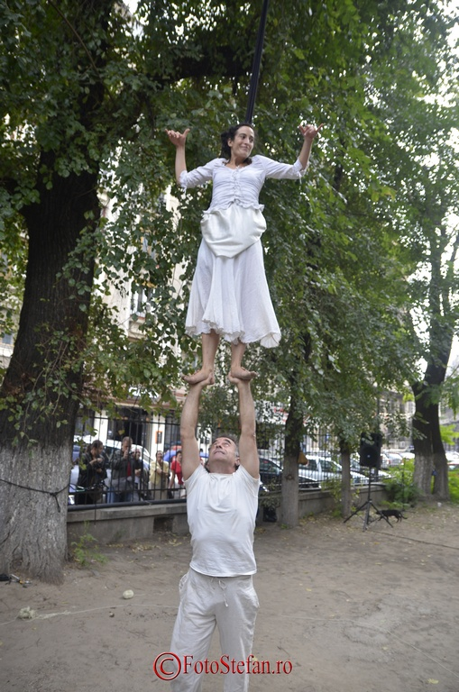 Circo Delicia - Arbolar Arvolar