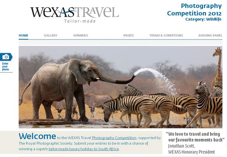 concurs foto wildlife