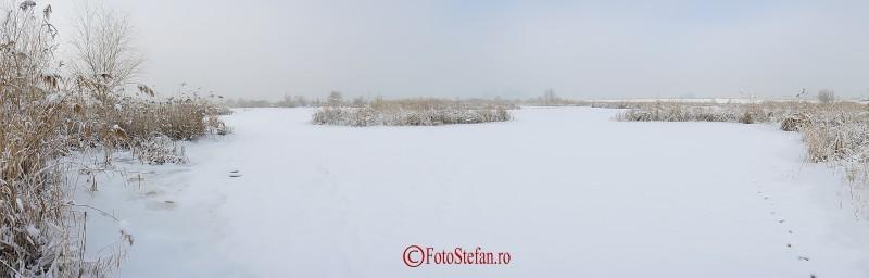 lacul vacaresti iarna