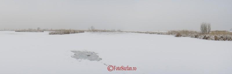 poza iarna lacul vacaresti