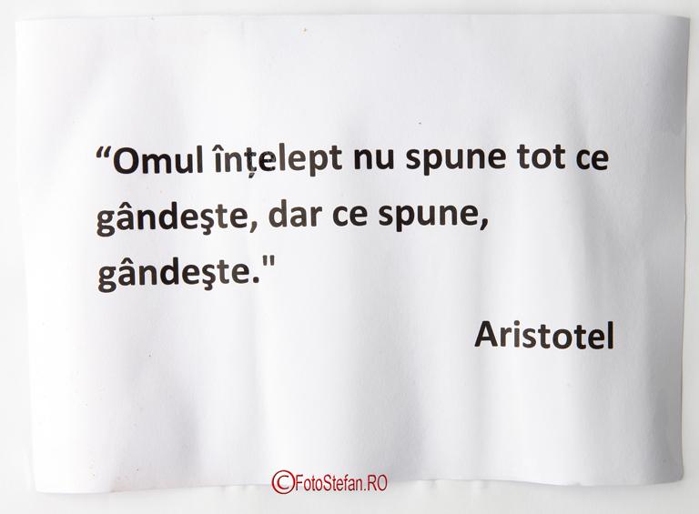 citat aristotel printat epson