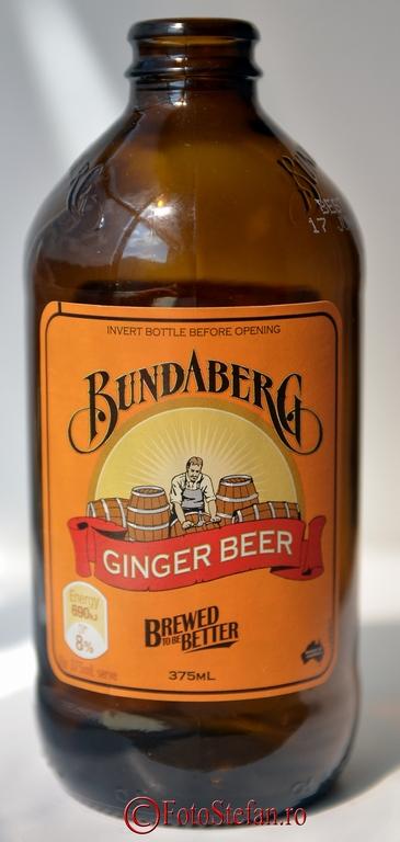 ginger beer suc cu ghimbir