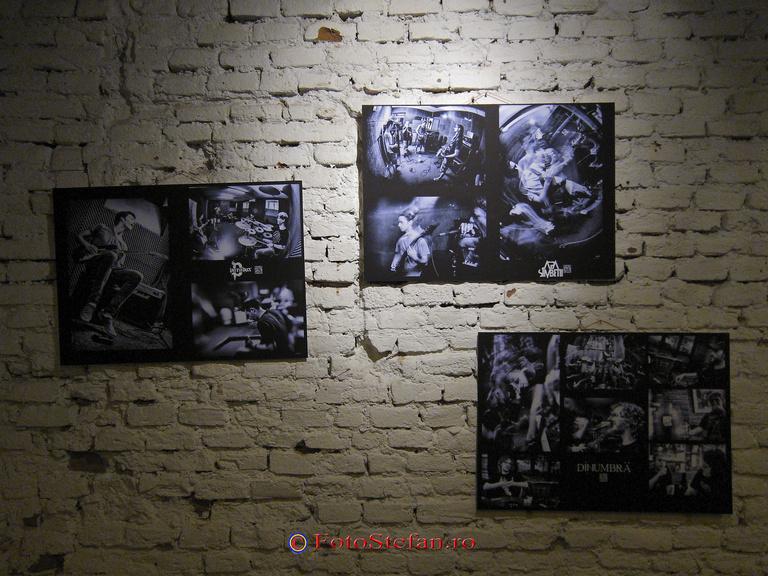 miluta flueras expozitie foto