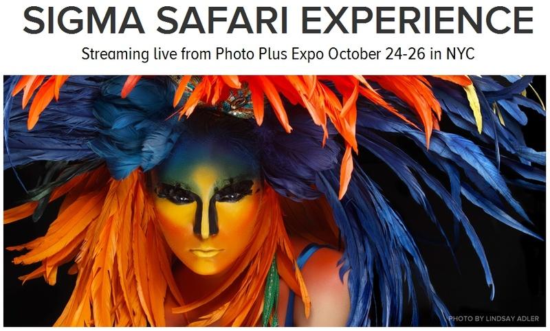 Sigma Safari experience