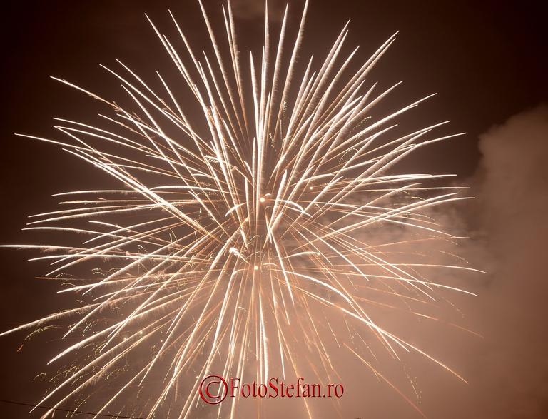 Focuri de artificii Revelion piata Constitutiei, Bucuresti