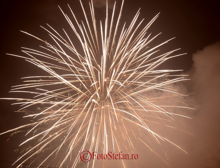artificii revelion piata constitutiei