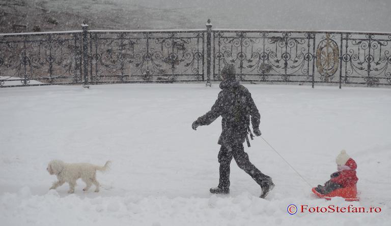 ninsoare parc bucuresti