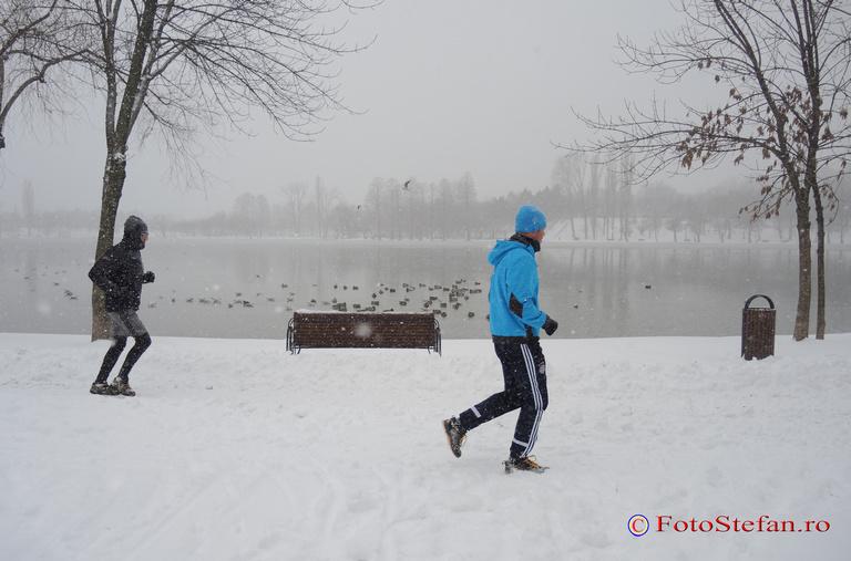 alergat prin parc iarna