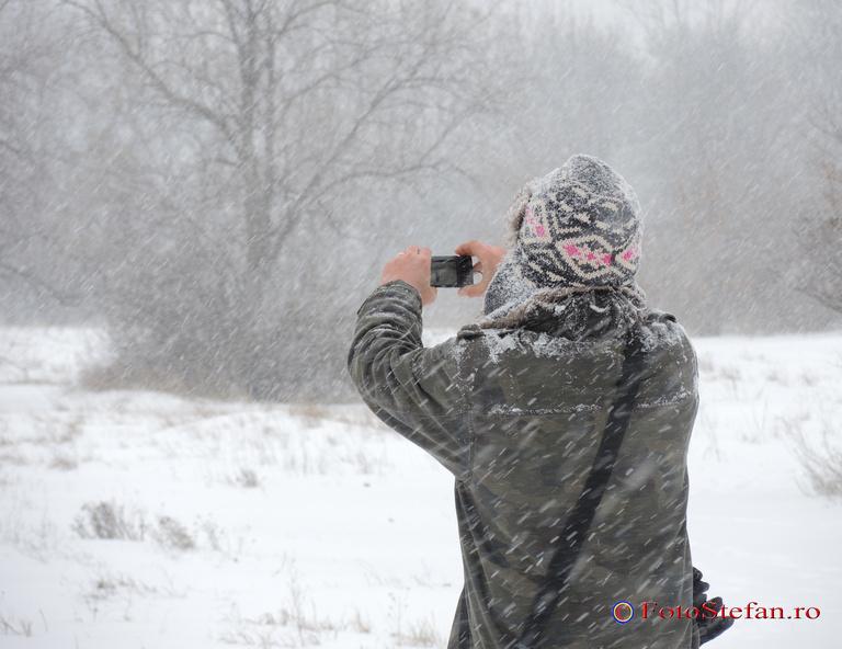 fotografiere iarna
