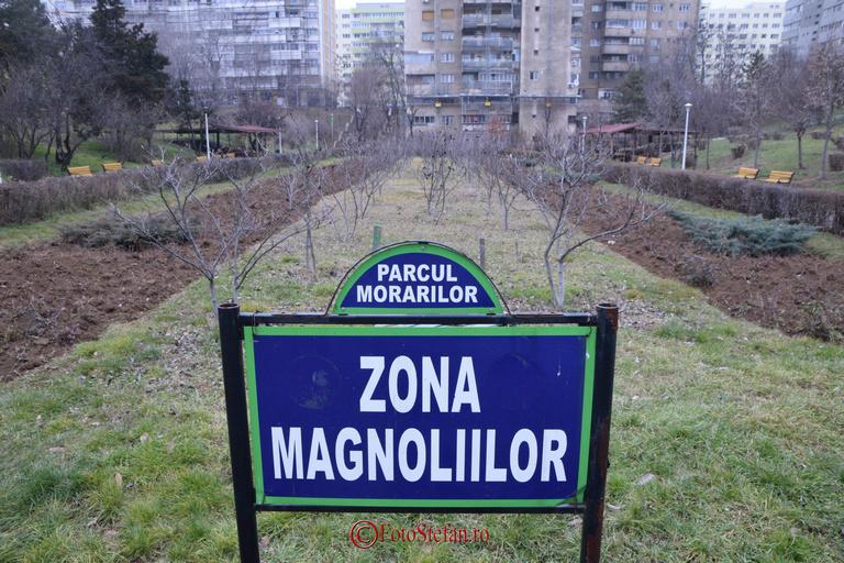 zona magnoliilor parc