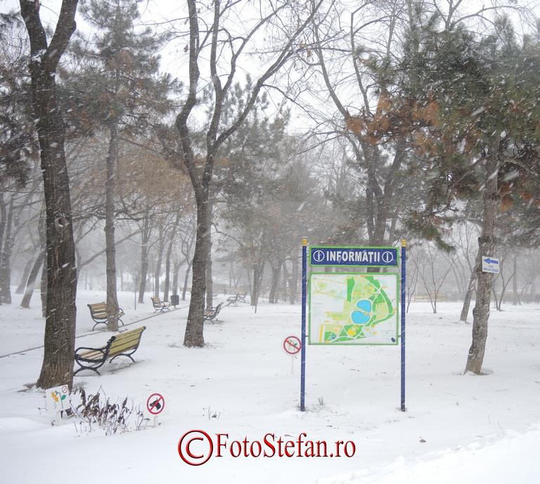 parcul morarilor iarna