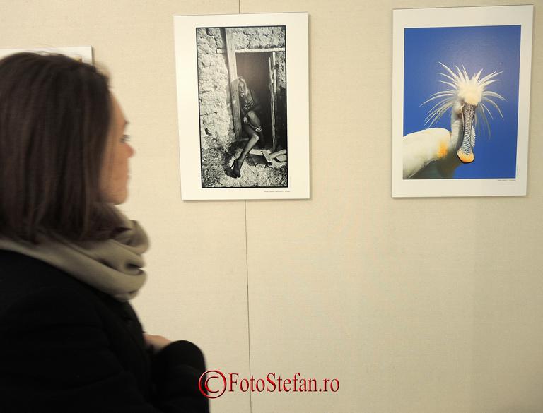 expozitie foto bucuresti
