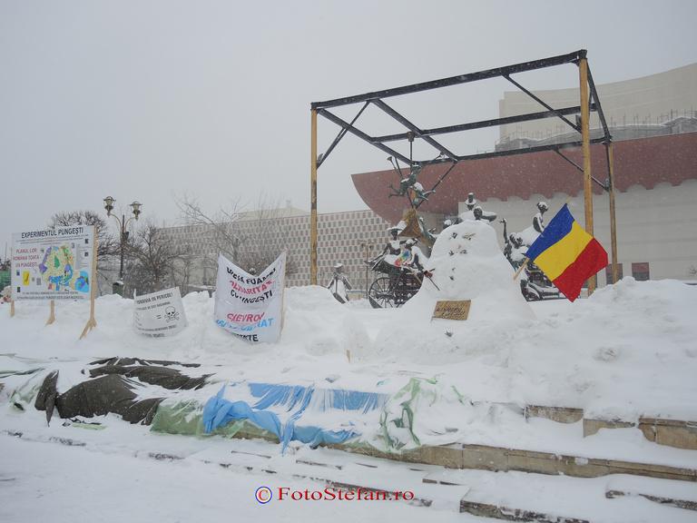 protest iarna