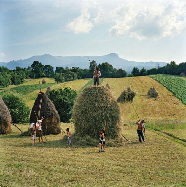 Transilvania: construit pe iarba