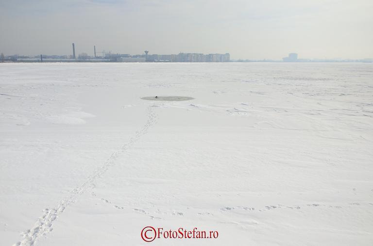 copca pescuit iarna lacul morii