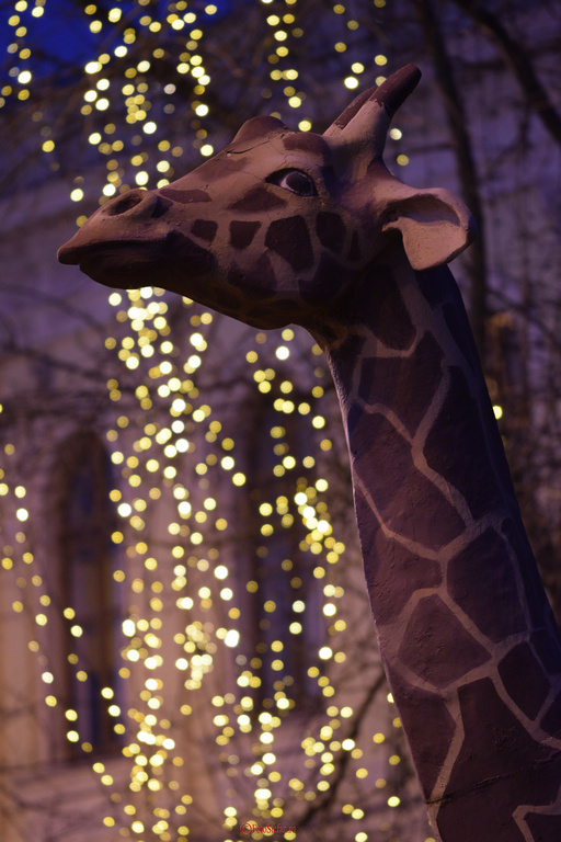 girafa muzeu antipa