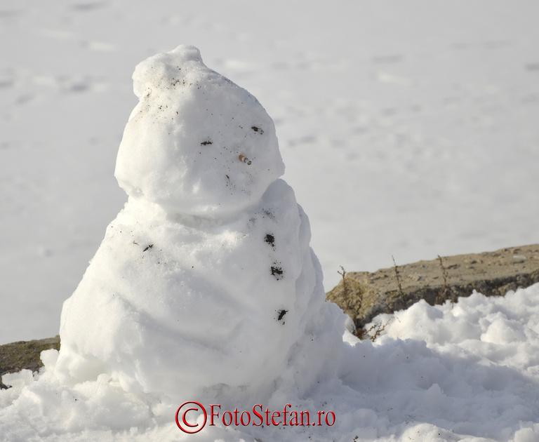 cringasi iarna zapada