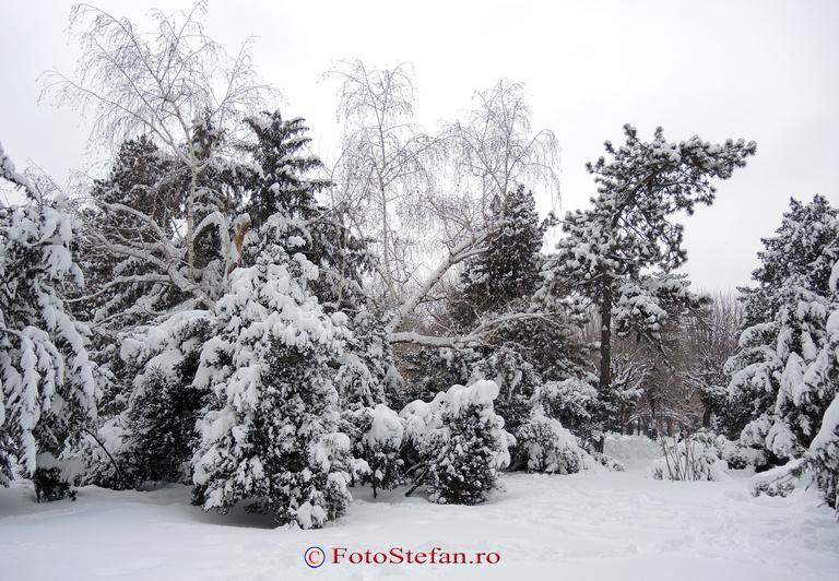 parcul cismigiu nins
