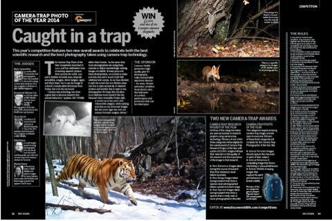 concurs de fotografie bbc wildlife