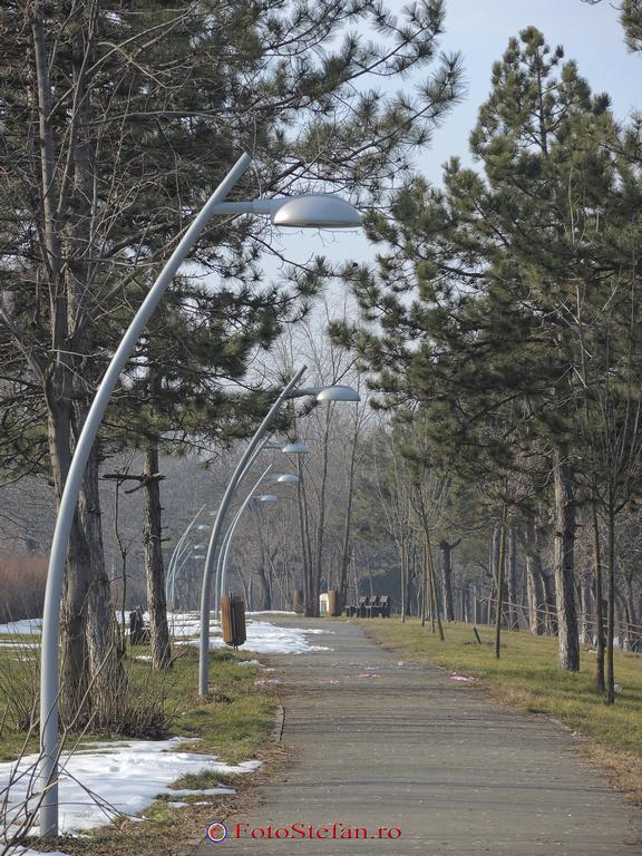 iluminat public parc pantelimon