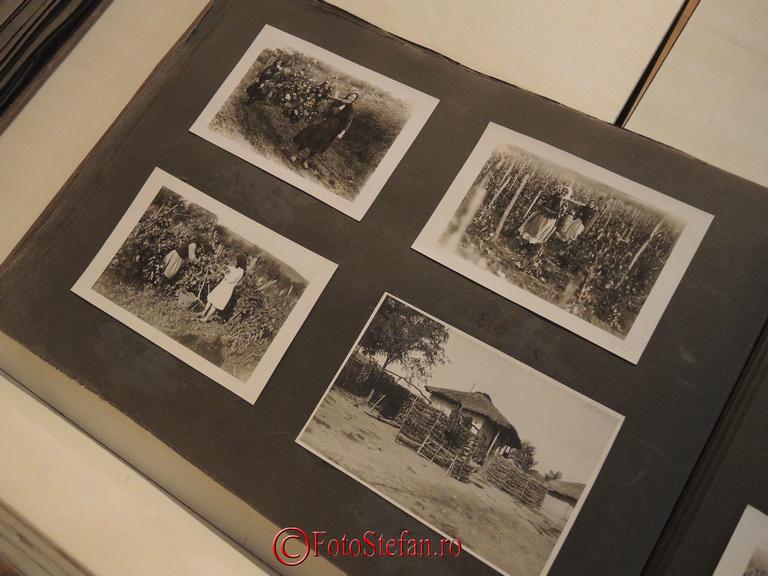 fotografii de arhiva