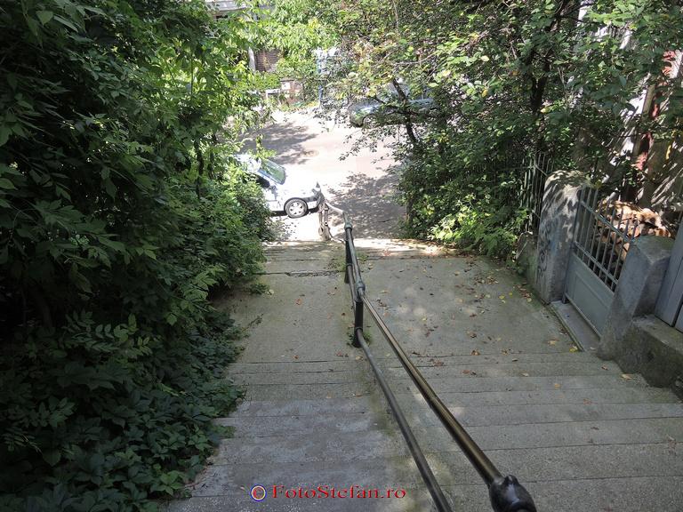 alee in trepte parc Romniceanu