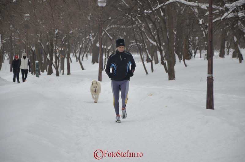 alergatori iarna
