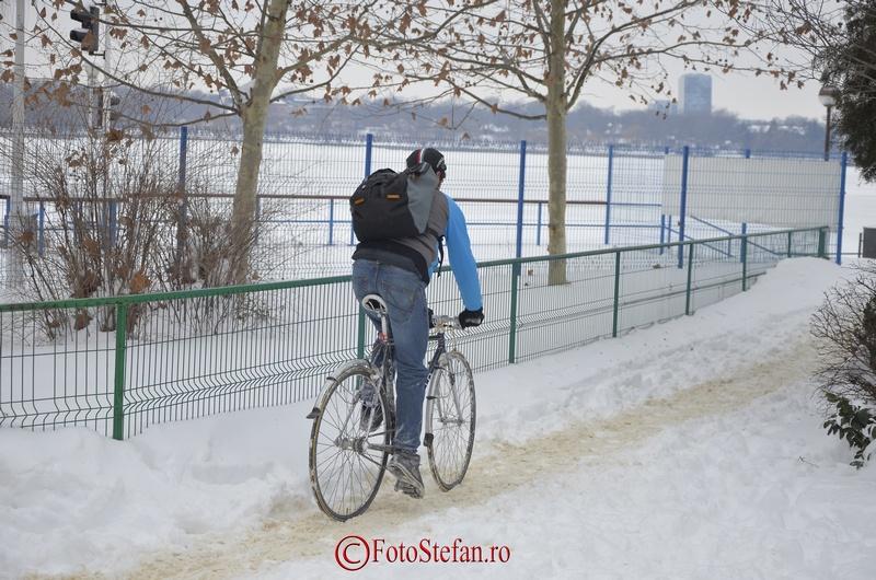 biciclist iarna bucuresti herastrau