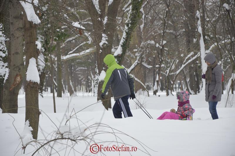 sanie parc herastrau iarna