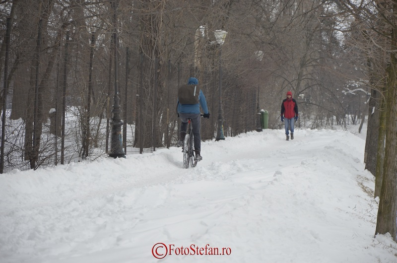 bicicleta iarna parc herastrau