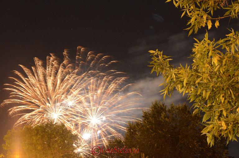 foc artificii  Ziua Limbii Romane