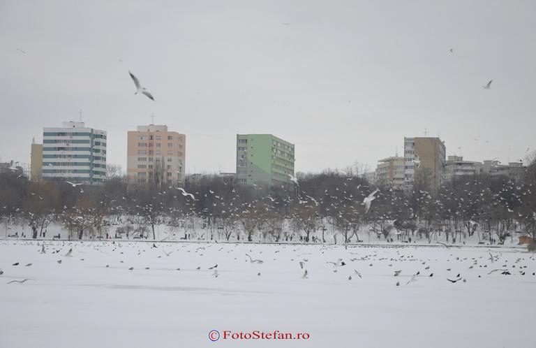 parc ior iarna zapada