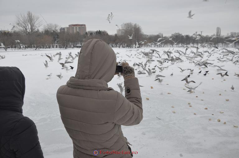 fotografiat lac titan bucuresti iarna