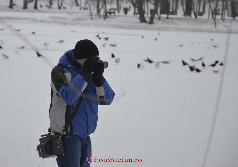 fotograf parc titan bucuresti iarna