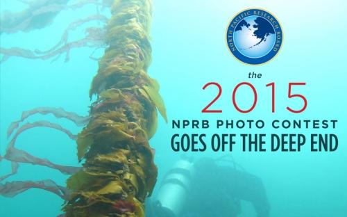 photo contest NPRB