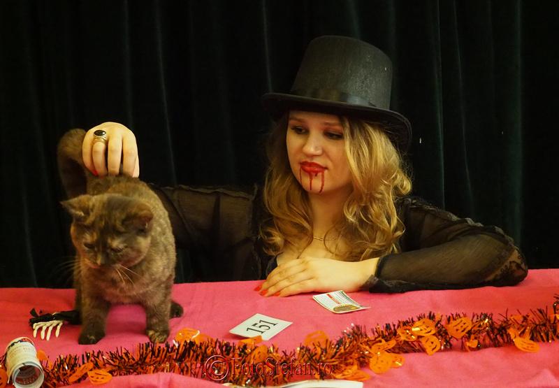 HalloWinner Cat Show