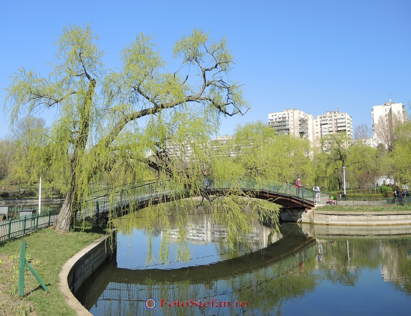 pod parcul morarilor