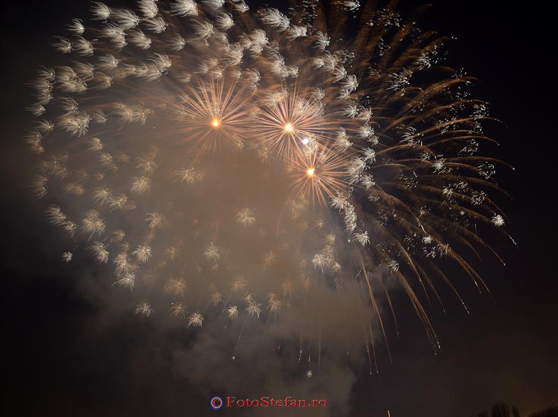 artificii revelion parc alexandru ioan cuza