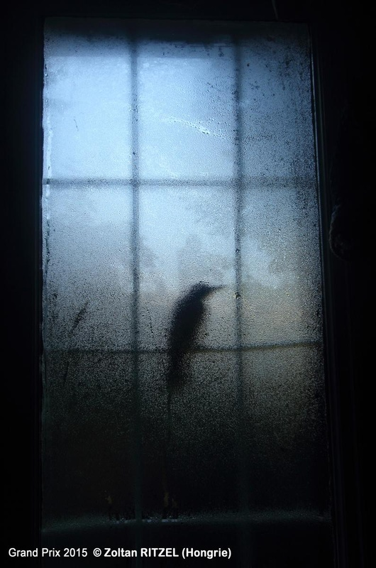 Zoltan RITZEL fotograf ungaria