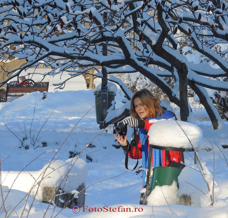 fotografi poze parc herastrau bucuresti zapada iarna