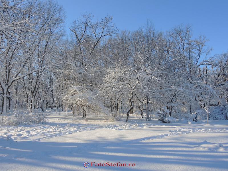 parcul herastrau bucuresti iarna zapada