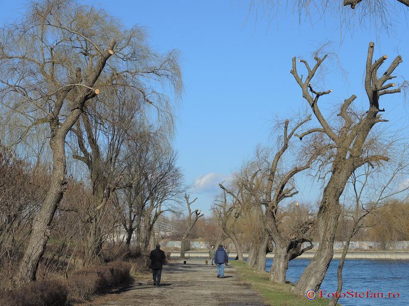 parcul plumbuita colentina
