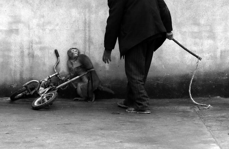 Yongzhi Chu china fotograf