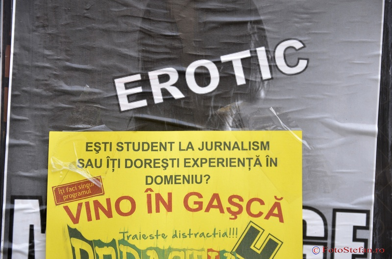 jurnalism erotic